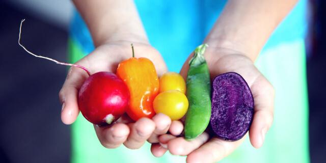 a rainbow of healthy produce