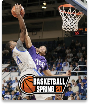 Basketball Spring Image