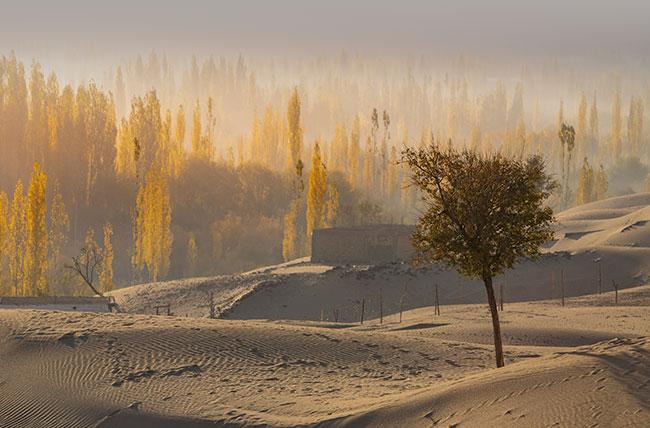 Sand Desert At Skardu