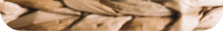 Simba Profile Picture Bottom Part